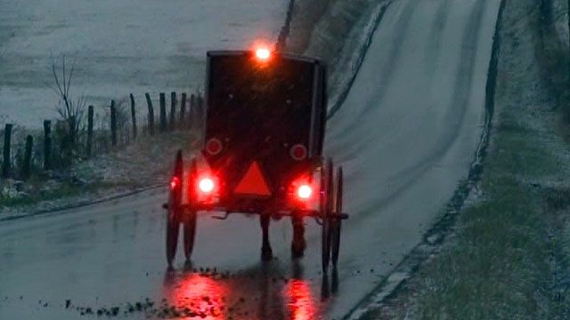 ATV rear ends Amish buggy carrying family of 11