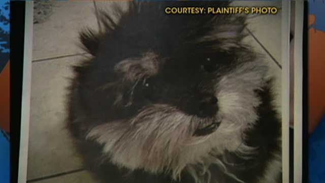 Suit Alleges Petco Clipped Dog's Ear Off